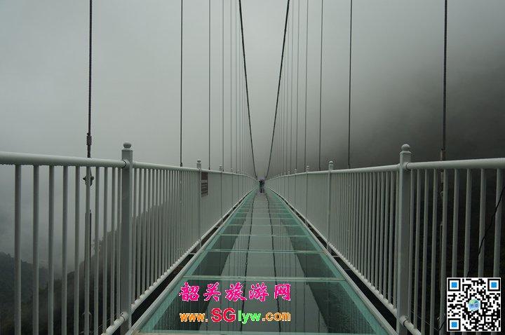 乳源云门山玻璃桥、南雄帽子峰林场赏银杏两日游